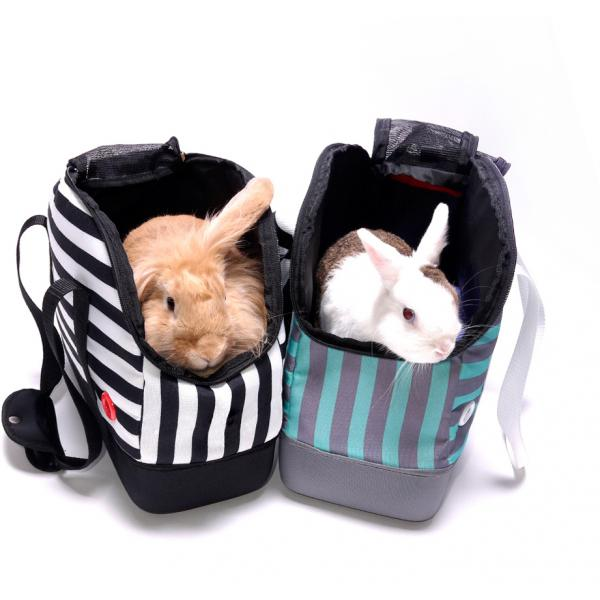 Hop In Petbowling Bag - Mint Monostripe