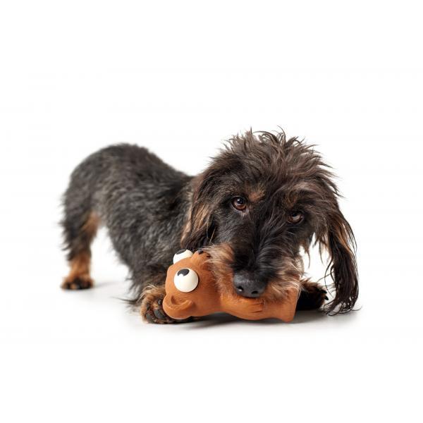 Dog Toy Auckland Bear - 10 CM